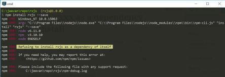 npm install error